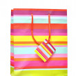 Shopping bag — Stock Photo #7388797