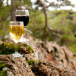 Glass of red and white wine on a mossy stone - Stock Photo