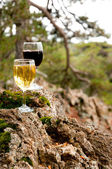 Glass of red and white wine on a mossy stone — Stock Photo