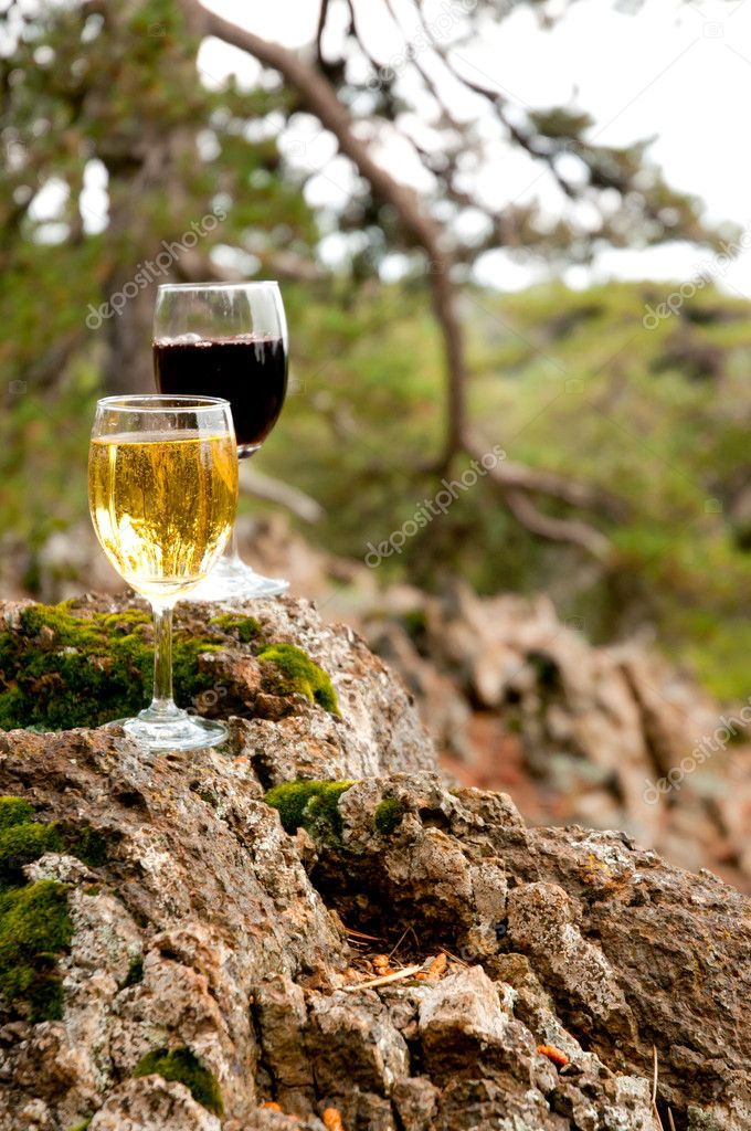 Glass of red and white wine on a mossy stone. Outdoor — Stock Photo #7329196