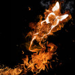 Fire butterfly - Stock Photo