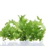 Fresh salad — Stock Photo #7204971