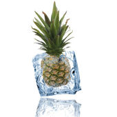 Pine apple frozen in ice cube — Stock Photo