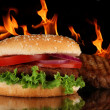 Hamburger — Stock Photo #7215324