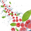 Fresh fruit in motion — ストック写真