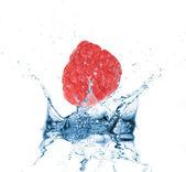 Raspberry dropped into water splash on white — Stock Photo