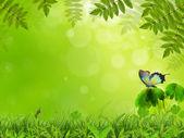 Nature scenery — Stock Photo