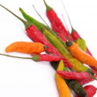 Colorful chilli peppers — Stock Photo