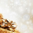 Christmas background — Stock Photo #7587630
