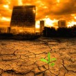 Global warming — Stockfoto #7644152