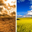 Effect of global warming — Stock Photo