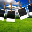 Photo frames with nature background — Stock Photo