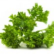 Fresh parsley on white background - Stock Photo
