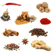 Collection of various spices - Zdjęcie stockowe
