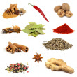 Collection of various spices - Stock Photo