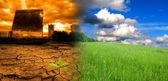 全球变暖的影响 — 图库照片