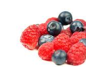 Fresh raspberries and blueberries on white background — Stock Photo