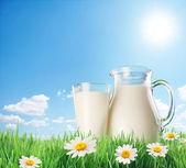 Sürahi ve bardak chamomiles ile çim süt. bir arka plan üzerinde — Stok fotoğraf