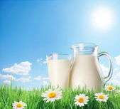 Milk jug and glass on the grass with chamomiles. On a background — Stock Photo