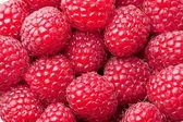 Ripe raspberries. — Stock Photo