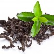 Heap of dry tea with green tea leaves. — Stock Photo #7540297