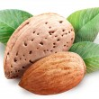 Almond nuts. - Stock Photo