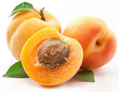 Apricots with leaves — Stock Photo
