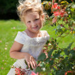 Girl in roses garden — Stock Photo