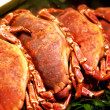 Raw crabs in shop — Stock Photo