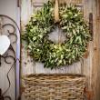 Seasonal plant decoration — Stock Photo
