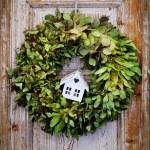 Seasonal plant decoration — Стоковое фото