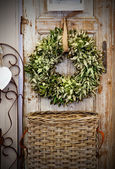 Seasonal plant decoration — Stock Photo