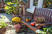 Autumn in dutch garden — Stock Photo