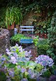 Herfst garden — Stockfoto