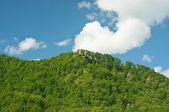 Zomer landschap met een bomen, bergen, wolken en blauwe hemel — Stockfoto