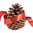 Foto Stock: Fir cones and ribbon