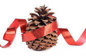Fir cones and ribbon — Stock Photo