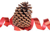 Cones and red ribbon — Stock Photo