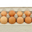 Dozen Organic Eggs — Stock Photo