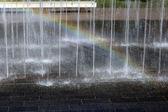 美丽和湿 — 图库照片