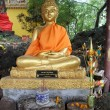 Buddha in Wat Si Muang — Stock Photo