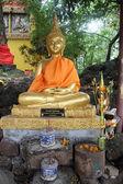 будда в wat si муанг — Стоковое фото