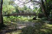 Bridge and water — Stock Photo