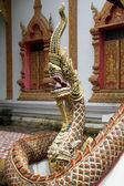 大きな snakenear 寺 — ストック写真