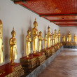 Row of golden Buddhas — Stock Photo