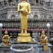 Golden buddha — Stock Photo #7527466