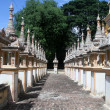 Rows of stupas — Stock Photo