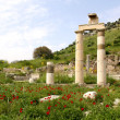 Ephesus — Photo #7547908