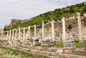 Ephesus columns — Stock Photo
