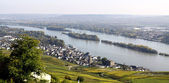 Ruedesheim and Rhine — Stock Photo